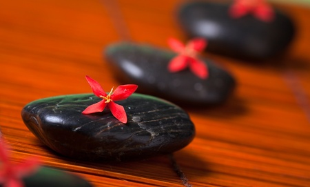art therapy: Health spa & massage still life: Black hot rocks with red flowers Stock Photo