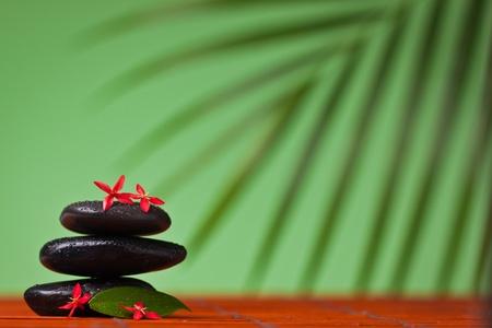 Spa & massage still life : balancing black stones, flowers and leafs photo