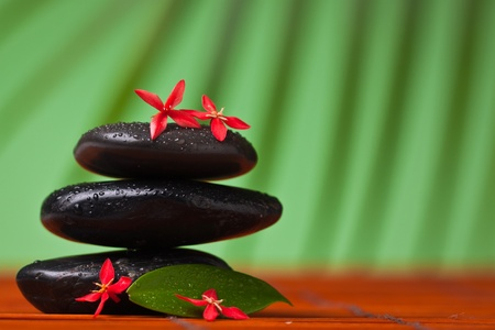 Spa & massage still life : close-up of balancing black stones, flowers and leafs
