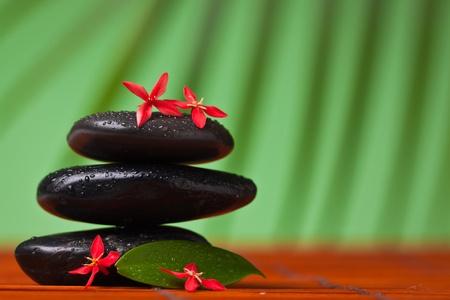 Spa y masaje de la naturaleza muerta: cerca de equilibrar las piedras negras, flores y hojas