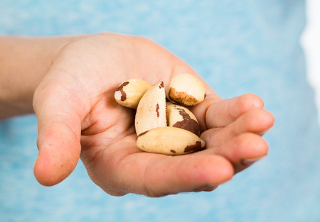 Hand holding a heap of organic brazil nuts