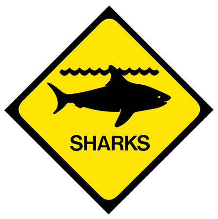 no swimming sign: A black and yellow shark warning sign  Isolated on white