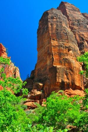 ギザギザの砂岩の岩ザイオン国立公園で。