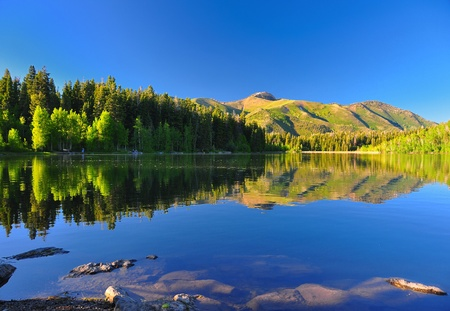 Serene lake in Utah with beautiful reflection of the mountain and trees. Banco de Imagens - 9364772