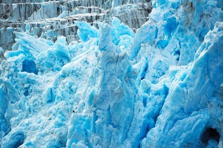 Deep blue glacier ice with a bald eagle.