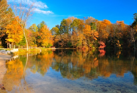 Peak Fall Foliage at Pine Grove Furnace State PArk, Pennsylvania Stock Photo