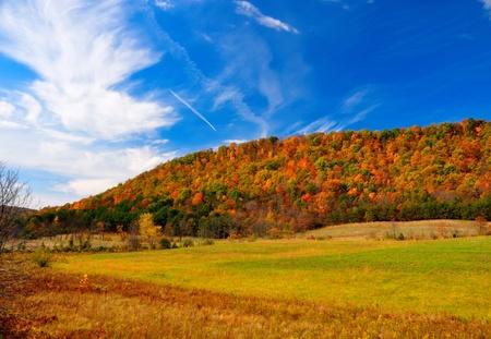 Peak Fall Foliage photo