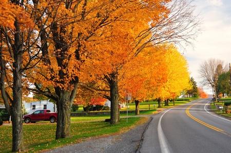 落下中に農村部ペンシルベニア州の風光明媚な道路 写真素材
