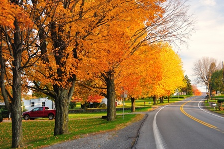 Scenic Road during fall in rural Pennsylvania photo