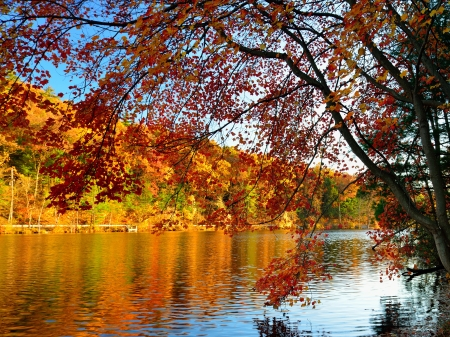 Glorious fall colors with lake as background