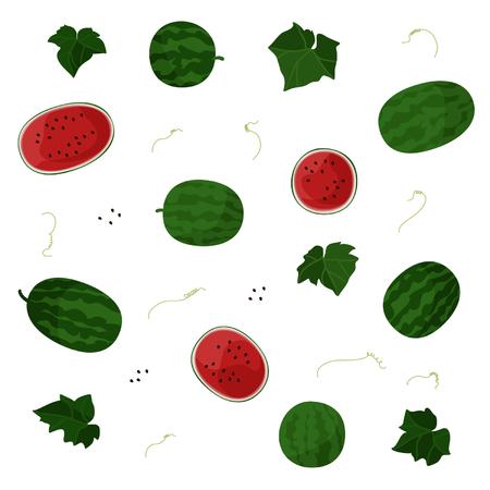 Watermelon - vector illustration