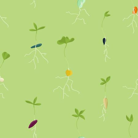 Growing seeds - vector background