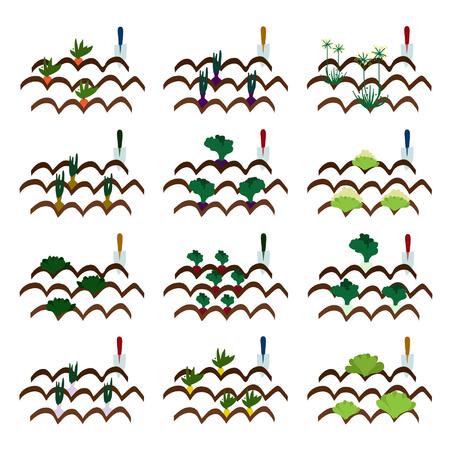 Kweek van groenten vector illustraties Stock Illustratie