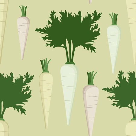 Root parsley - vector background Illustration