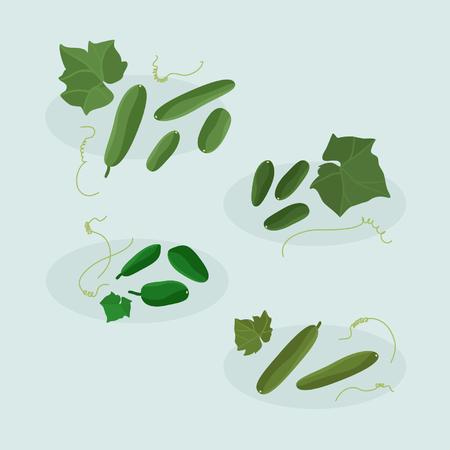 Cucumbers - vector illustration Ilustração