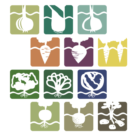 Set of vegetable signs - vector illustration