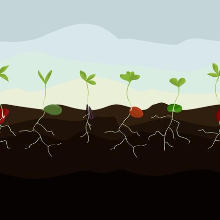 Groeiende zaden illustratie. Stock Illustratie
