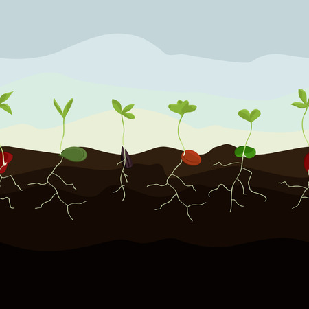 Growing seeds illustration.