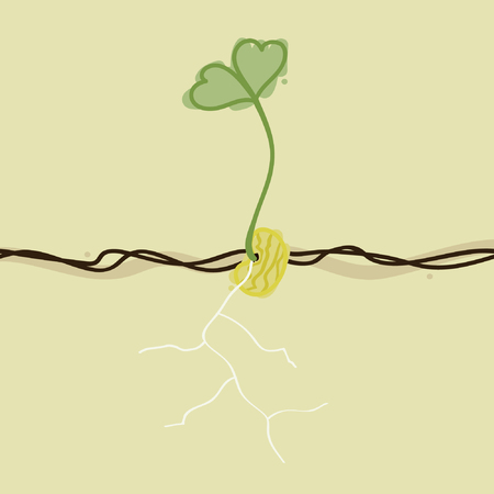 Growing yellow bean - vector illustration Ilustração