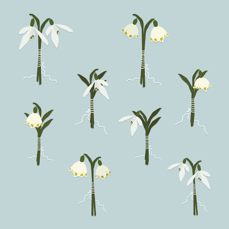 Set of snowdrop and snowflake bouquets - vector illustration Ilustração