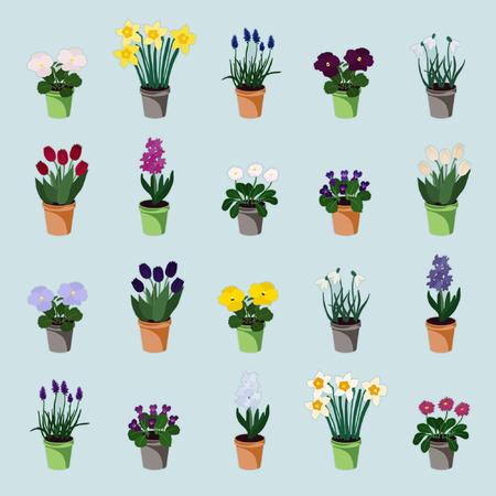 Set of spring flowers in flowerpots -  vector illustration