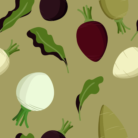 Beetroot, sugar beet and turnip vector background