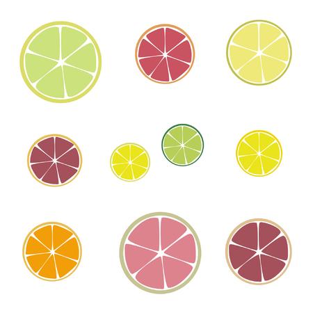 Citrus fruit slices - vector illustration Illustration