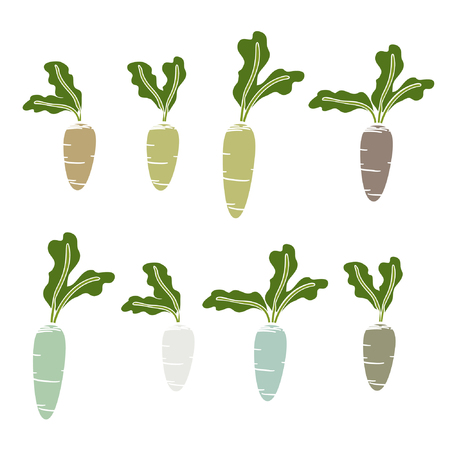 Set of colorful beets - vector illustration Ilustrace
