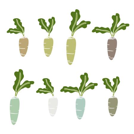 Set of colorful beets - vector illustration Illustration