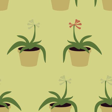 Blooming indoor plant - vector background