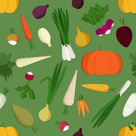 Pumkin, carrot, onion and radish - vector illustration