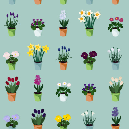Potted spring flowers - vector illustration