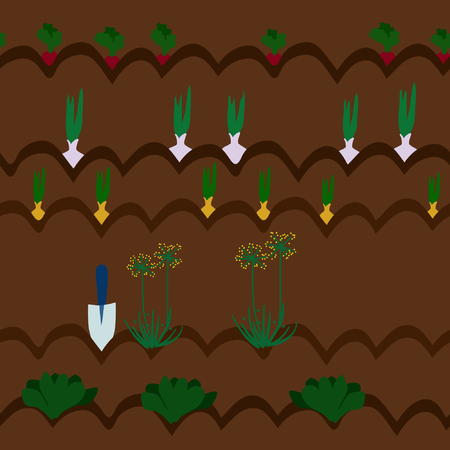 Cultivation of vegetables - vector illustration