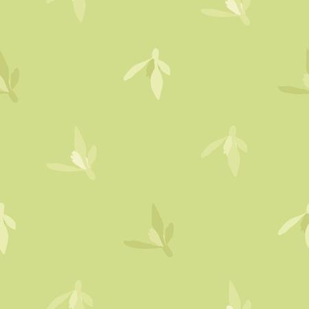 Snowdrop blossoms on light green - vector background Çizim