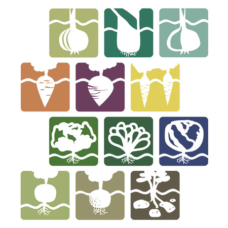 Set of various vegetable signs - vector illustration