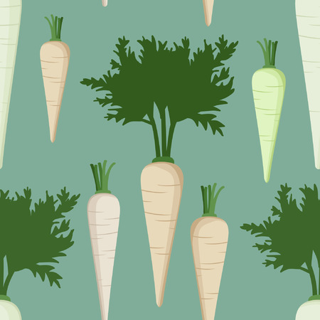 Root parsley on a light blue background - vector illustration