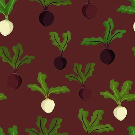 Beetroot and sugar beet - vector background
