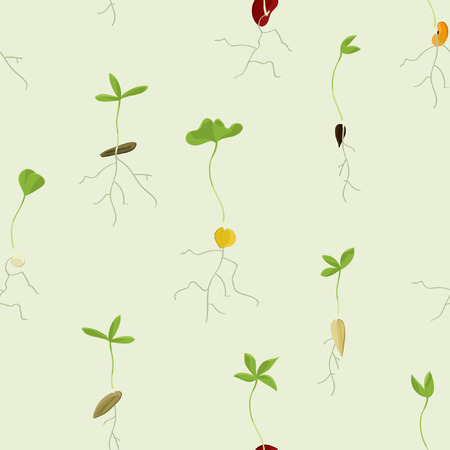 Various growing seeds - vector background