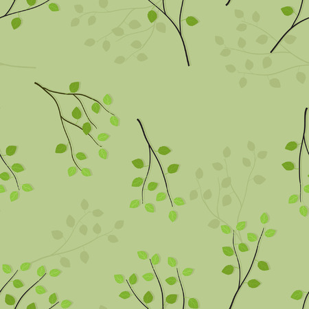Birch branches on light green background - vector background