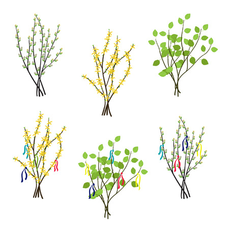 Set of Forsythia, willow and birch bouquets - vector illustration Stock Illustratie