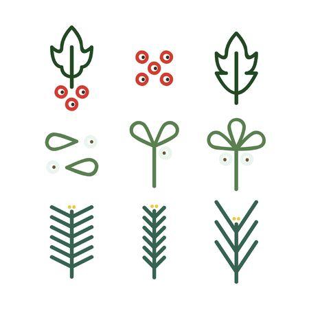 Outline holly, mistletoe, pine and spruce - vector illustration