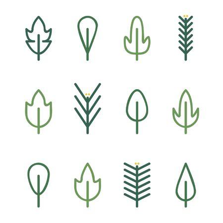 Outline leaves and conifer twigs set - vector illustration