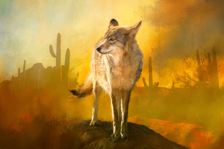 Coyote Painting in American Southwest