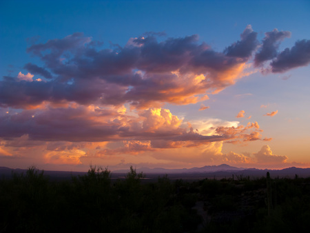 Clouds and Sunset or Sunrise with Silhouette Cactus in the Sonoran Desert Stok Fotoğraf - 80852580