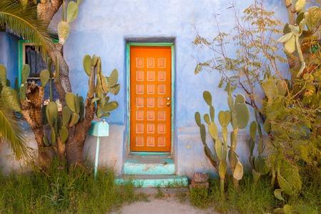 Puerta pintada con cactus y pared de estuco en el suroeste Foto de archivo - 80991879