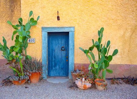 Blue door weathered stucco potted cactus plants