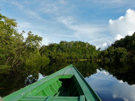 Reflections of Amazon river, Brazil Stock Photo - 9351269