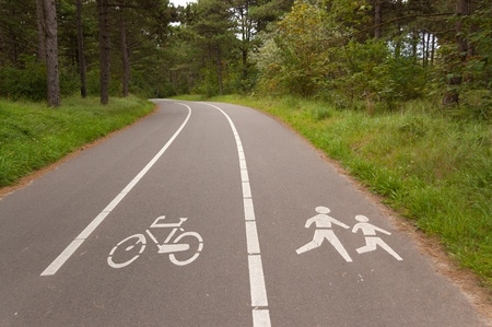 Bicycle and walking lane in forest. Outdoor sport, fitness and active healthy lifestyle concept photo