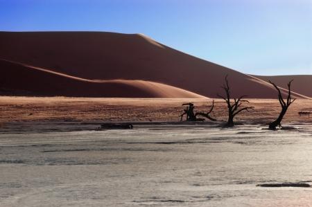 red soil: Landscape of Dead Vlei, Sossusvlei, Namib desert  Namibia, South Africa Stock Photo