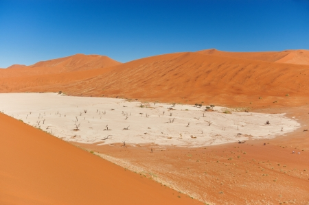 View of Dead Vlei, Namib desert, Sosussvlei, Namibia, South Africa photo